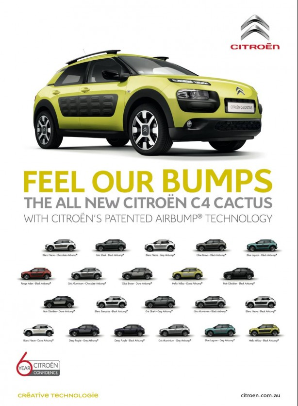 Citroen C4 Cactus colour combinations