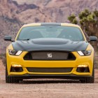 Ford-Mustang-Shelby-Terlingua-racing-front2