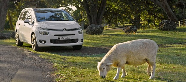 Citroen animal deterring technology